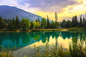 Hintergrundbilder Kanada Park See Gebirge Wälder Banff Natur