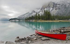 Bilder Kanada Park Gebirge See Küste Boot Jasper park