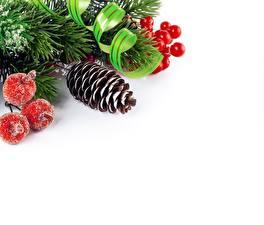 Hintergrundbilder Neujahr Beere Zapfen Vorlage Grußkarte Weißer hintergrund