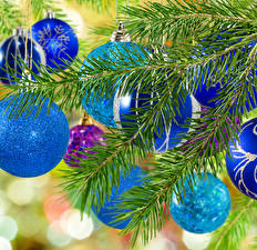 Images New year Branches Balls Light Blue