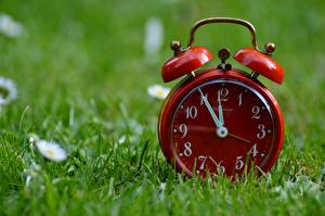 Image Clock Clock face Alarm clock Closeup Grass