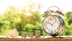 Bilder Uhr Zifferblatt Wecker Geld Münze Großansicht