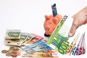 Fotos Münze Banknoten Geld Euro