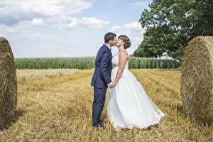 Fotos Acker Paare in der Liebe Mann Stroh Heirat 2 Bräutigam Brautpaar Kuss Mädchens