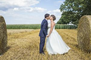 Pictures Fields Couples in love Men Straw Marriage Two Groom Brides Kiss Girls