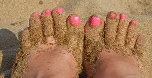 Bilder Finger Großansicht Sand Bein Maniküre