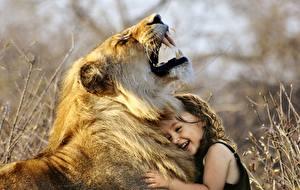 Fotos Löwen Eckzahn Große Katze 2 Kleine Mädchen Schnauze Lachen kind Tiere
