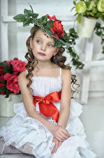 壁纸,,小女孩,模特兒,坐,帽子,连衣裙,儿童