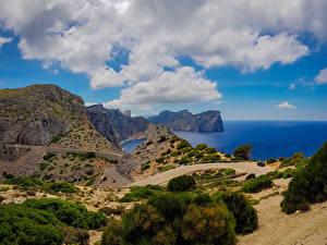 Bilder Mallorca Küste Straße Felsen Strauch Natur