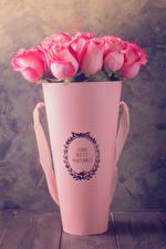 Bilder Rosen Vase Rosa Farbe Blumen