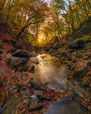 Picture Russia Crimea Autumn Stones Trees Foliage Rays of light Stream Nature
