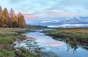 Hintergrundbilder Russland Gebirge Wald Gras Altai Natur