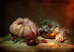 Image Still-life Pumpkin Sorbus Cockerel Branches Lantern Food
