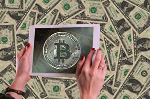 Hintergrundbilder Tablet-PC Bitcoin Dollars Geldscheine Geld Hand