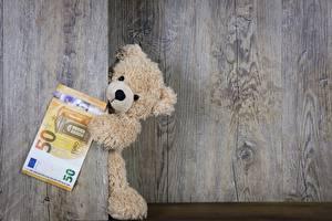 Picture Teddy bear Euro Money Paper money Boards