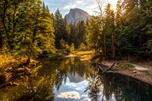 Photo USA Parks Autumn Mountain Forest Lake Yosemite Trees Nature