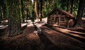 Fotos Vereinigte Staaten Park Wälder Gebäude Kalifornien Yosemite Baumstamm Laubmoose Natur