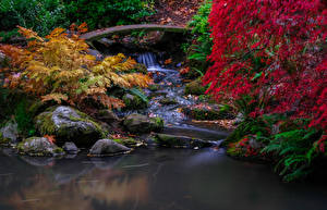 Photo USA Seattle Parks Autumn Waterfalls Stones Moss Foliage Branches Kubota Gardens Nature