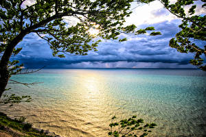 Images USA Sunrises and sunsets Branches Lake Michigan Nature