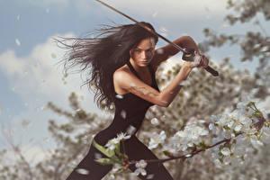 Bilder Krieger Braune Haare Schwert Hand Haar Mädchens