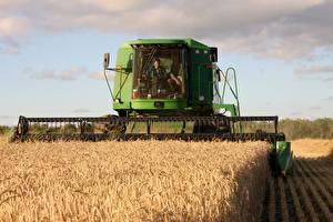 Bilder Weizen Acker Landwirtschaftlichen Maschinen Mähdrescher