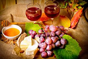Fotos Wein Weintraube Honig Käse Stillleben Weinglas