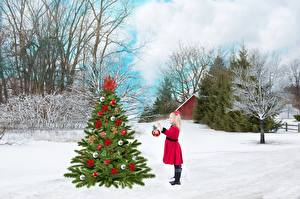 Photo Winter New year Snow Christmas tree Trees Little girls Children
