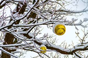 Wallpaper Winter Snow Branches Balls