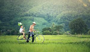 Fotos Asiatische Mann 2 Gras Fahrrad Junge Der Hut Kinder