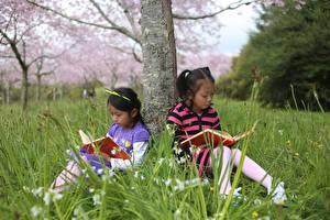 Fotos Asiatisches Baumstamm Kleine Mädchen Buch Sitzend Zwei Gras Kinder