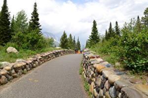 Hintergrundbilder Herbst USA Steine Park Geht Wyoming, Grand Teton National Park Natur