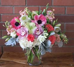 Hintergrundbilder Sträuße Windröschen Rosen Orchideen Levkojen Blumen