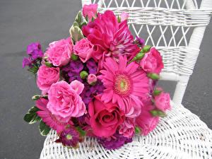 Bilder Sträuße Rosen Gerbera Georginen Nelken Stuhl Rosa Farbe