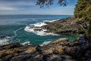 Fotos Kanada Park Meer Küste Wasserwelle Vancouver Island Parks