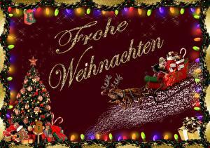 Hintergrundbilder Neujahr Hirsche Weihnachtsbaum Geschenke Schlitten Weihnachtsmann Deutscher