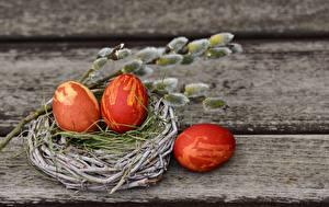 Hintergrundbilder Ostern Bretter Nest Ei Ast