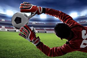 Fotos Fußball Torwart Ball Hand Handschuh Sprung Sport