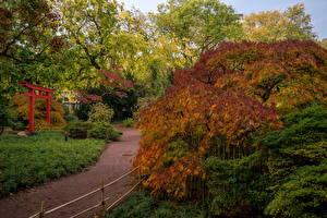 Hintergrundbilder Deutschland Park Herbst Strauch Karlsruhe