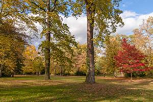 Fotos Deutschland Park Herbst Bäume Karlsruhe