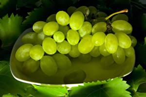Fotos Weintraube Großansicht