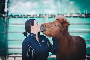 Hintergrundbilder Pferde 2 Brünette Kuss ein Tier Mädchens
