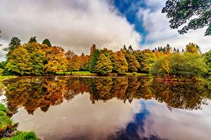 Bilder Irland Park Teich Herbst Bäume Botanic Gardens Dublin