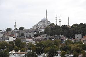 Bakgrundsbilder på skrivbordet Istanbul Turkiet Byggnader Moské Träd Sultanahmet