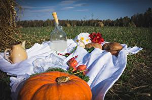 Pictures Pumpkin Bread Vodka Tomatoes Fields Picnic Highball glass Bottle