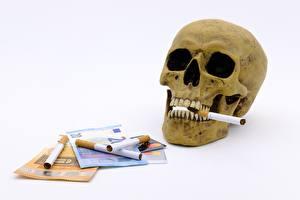 Hintergrundbilder Schädel Geldscheine Geld Euro Zigaretten Weißer hintergrund