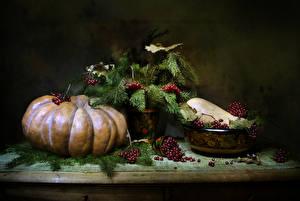 Fotos Stillleben Kürbisse Eberesche Ast Lebensmittel