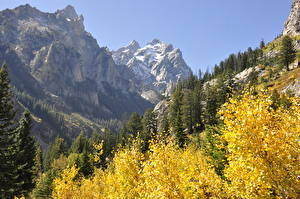 Fotos USA Gebirge Herbst Wälder Park Felsen Grand Teton National Park, Wyoming Natur