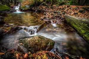 Fotos Vereinigte Staaten Park Herbst Steine Kalifornien Yosemite Laubmoose Blatt