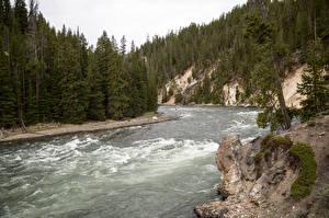 Hintergrundbilder Vereinigte Staaten Park Flusse Wälder Yellowstone Yellowstone national park, Wyoming Natur