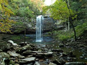 Bilder Vereinigte Staaten Park Wasserfall Steine Felsen Cloudland Canyon State Park